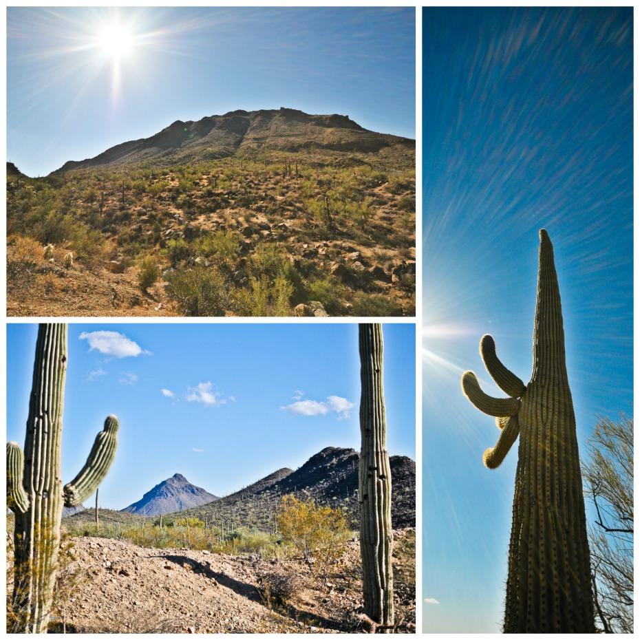 Tucson collage